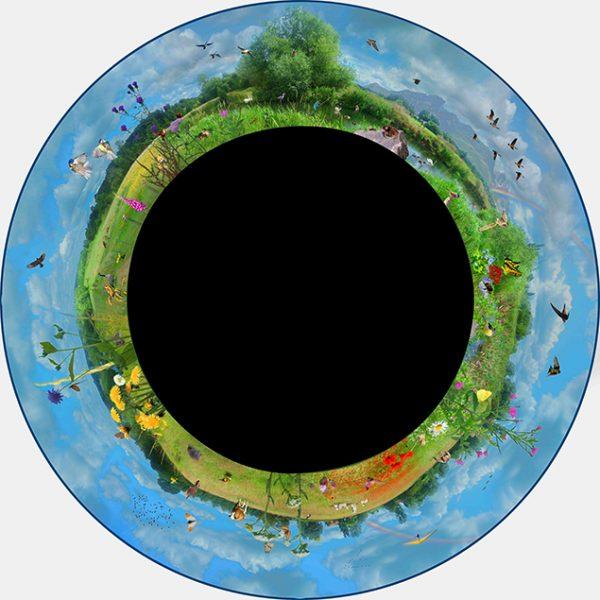 Max Effect Meadows Wheel
