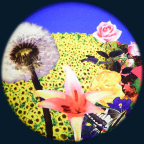 """Flowers 6"""" Effect Wheel"""